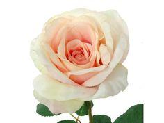 Vara de rosa de 70 cms. de color rosa