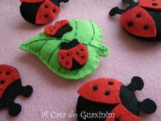 Joaninhas / Ladybugs | by A.casa.do.Guaxinim