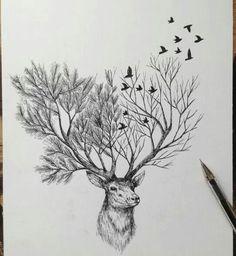 Alfred Basha drawing