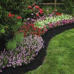 121 Best Hot Weather Plants Images Garden Plants Gardens Outdoor
