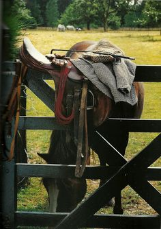 Could also incorporate horsey stuff like tack as decor... Nice things like saddles and things. Not plastic.