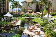 Westin Ka'anapali Ocean Resort Villas-North  #placesinparadisetravel