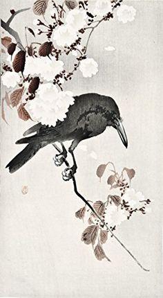 "Japanese Art Print ""Crow and Blossoms"" by Ohara Koson. Shin Hanga and Art Reproductions http://www.amazon.com/dp/B016WH5LKS/ref=cm_sw_r_pi_dp_1Pctwb0TQ4ESS"