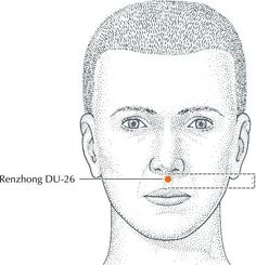 Facial Rejuvenation with Acupuncture Points – Province Apothecary Massage Tips, Face Massage, Massage Techniques, Acupuncture Benefits, Massage Benefits, Acupuncture Points Chart, Acupressure Points, How To Massage Yourself, Meridian Massage
