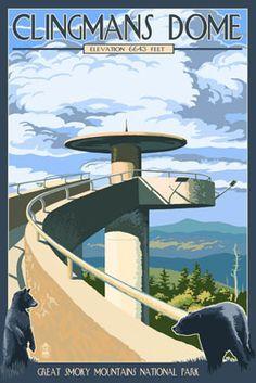 Clingmans Dome - Great Smoky Mountains National Park, TN - Lantern Press Poster