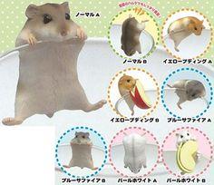 AmiAmi [Character & Hobby Shop] | PUTITTO Hamster 12Pack BOX(Pre-order)