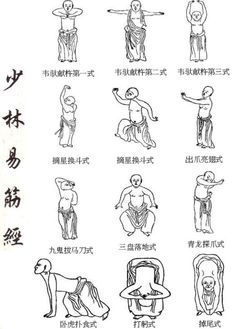 "Yijin Jing (simplified Chinese: 易筋经; traditional Chinese: 易筋經; pinyin: Yìjīnjīng. literally ""Muscle/Tendon Change Classic"""