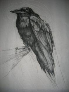 Raven small print by jazyjen42 on Etsy.
