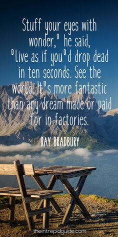 travelquote-stuff-your-eyes-with-wonder