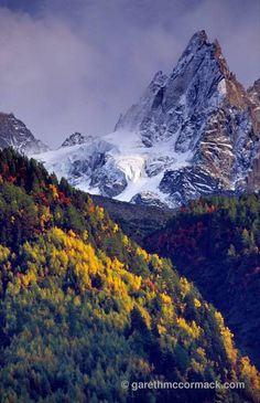 Autumnal forest beneath the Chamonix Aiguilles, French Alps, France. Stock Photo