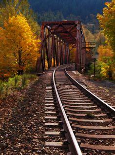 Fall Tracks - Photograph at barbarasharts.com  #MyVSFallEdit