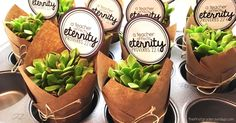 How to make this easy and adorable succulent plant gift for less than $3.00 each!