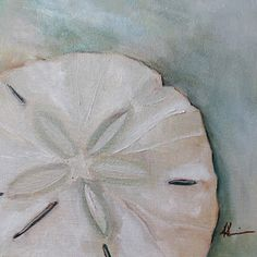 Artists Of Texas Contemporary Paintings and Art - Sand Dollar by Kristine Kainer