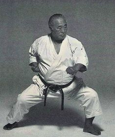 Kenpo Karate, Shotokan Karate, Karate Kata, Martial Arts Techniques, Combat Sport, Aikido, Mixed Martial Arts, Pose Reference, Kung Fu