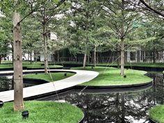 Park Landscape, Landscape Plans, Urban Landscape, Landscape Architecture, Landscape Design, Pond Landscaping, Modern Landscaping, Lotus Garden, Wetland Park