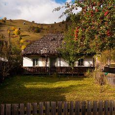 Casele bucovinene: bijuterii ale arhitecturii traditionale