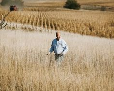 Farmers Abandoning GMO Seeds - for profit...but who really cares, as long as they do it?