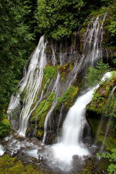 Panther Creek Falls -- two creeks come together to form this amazing spectacle, located just a couple of minutes from a National Forest Road in southern Washington.