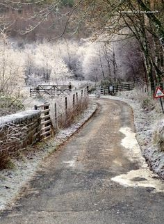 Frosty morning, Scotland