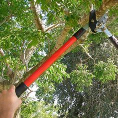 A compound action anvil lopper demonstration Garden Loppers, Garden Tools, Starting A Garden, Action, Good Things, Group Action, Yard Tools