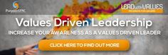 Meet Paul Ellis - one of your facilitators in developing Values Driven Leaders.