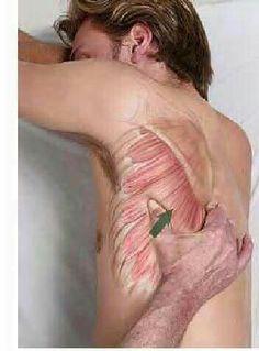 Cómo dar un buen masaje