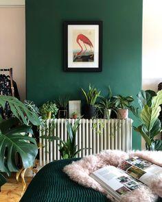 Plush pink, lush green, and palm fronds galore! Sounds like heaven! Plush pink, lush green, and palm Pink Green Bedrooms, Pink Bedroom Decor, Bedroom Plants, Green Rooms, Pink Room, Bedroom Green, Home Bedroom, Bedroom Interiors, Bedroom Ideas