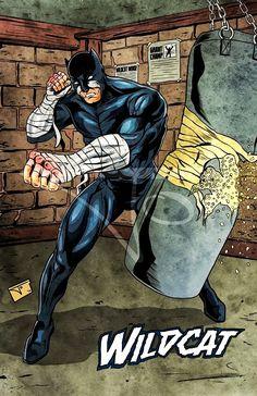 9e44a397aa7f DC Comics Wildcat Mister Terrific