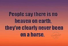 jpeg horse quotes or sayings pictures