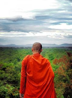 Buddhism is not a collection of views. It is a practice to help us eliminate wrong views.    — Thich Nhat Hanh, The Heart of Buddha's Teaching