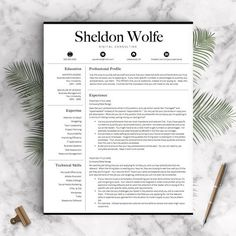 professional resume template for word and pages professional cv template 1 2 and