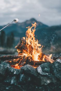 """""""You don't have to say everything to be a light. Sometimes a fire built on a hill will bring interested people to your campfire.""""~Shannon L. Alder #Camping #photo #nature #camp #fire #backpacking #survival #HikingTrails #photography #hikingadventures #adventuretime @geardoctors"""