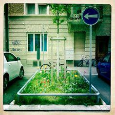 Guerilla Gardening |
