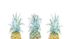 OhSoLovelyBlog-pineapple-desktop-01.png (1600×900)