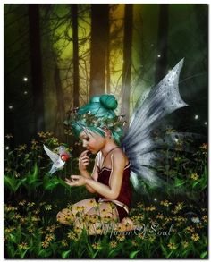 """A little fairy from my garden called """"Teally''.  I'm sure she's all cozy in her little fairy cottage this time of the year. ~•✿•~~•✿•~"""