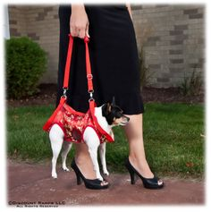 women with harness holding a dog in red harness.  Looks like she's about to swing it!  LOL