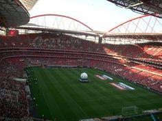 benfica soccer stadium in portugal