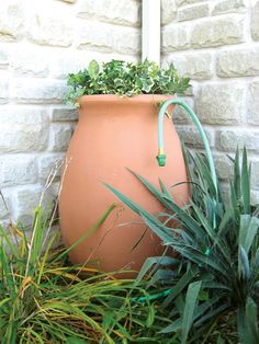 Agua water butt - this urn shaped water butt has a top which can be used as a planter or a bird bath
