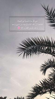 Beautiful Quran Quotes, Quran Quotes Love, Beautiful Arabic Words, Arabic Quotes, Words Quotes, Book Qoutes, Quotes For Book Lovers, Love Quotes Wallpaper, Islamic Quotes Wallpaper