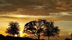 Love my Florida Sunshine ...♡♡