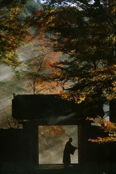 "tofuist: "" Sanzen-in Temple near Kyoto. Taken for a series on Japan for 'Life'…"
