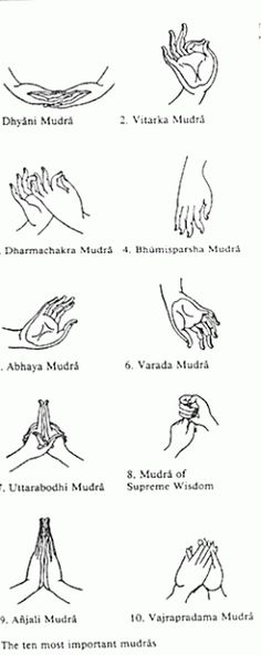 The most important mudras.