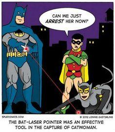 And they say bat brains has no sense of humor.  #batman #robin #catwoman