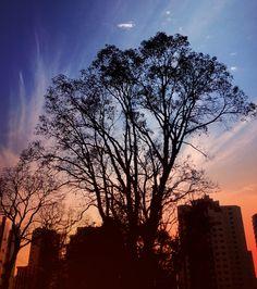 Curitiba's sunrise