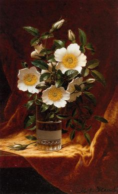 Cherokee Roses in a Glass by Martin Johnson Heade. Handmade oil painting reproductions for sale, Always custom made on premium grade canvas by talented artists. Painting Still Life, Still Life Art, Martin Johnson Heade, Robert Johnson, Rose In A Glass, Cherokee Rose, Hudson River School, Still Life Flowers, Oil Painting Reproductions