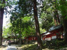 Tamukeyama Hachimangu, Nara city, Nara pref.