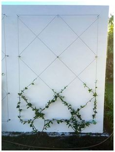 Use eye bolts and wire to create a wall mounted trellis for your climbing plants. Use eye bolts and wire to create a wall mounted trellis for your climbing plants. Adds ambiance and Backyard Vegetable Gardens, Vegetable Garden Design, Small Garden Design, Diy Garden, Garden Trellis, Garden Care, Garden Projects, Garden Landscaping, Outdoor Gardens