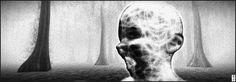 https://flic.kr/p/PXCGBY | Fuyuko 17-01-08 007 - The Winter of Our Discontent (berg by norden art, nordan om jordan) | Installation Penumbra by Meilo Minotaur and CapCat Ragu