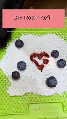 Beruhige deinen Hund mit nur wenigen Zutaten. Kefir, Cookies, Desserts, Blog, Diy, Few Ingredients, Pet Dogs, Creative, Bricolage