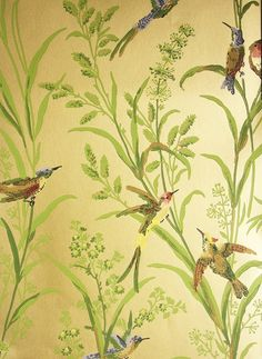 Augustine Wallpaper A printed wallpaper on a golden background featuring colourful birds amongst  wildflowers and plants.